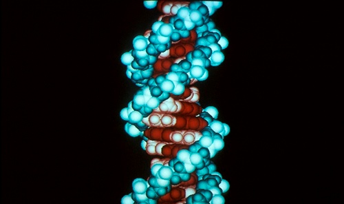 Copy of Computer_DNA_molecule